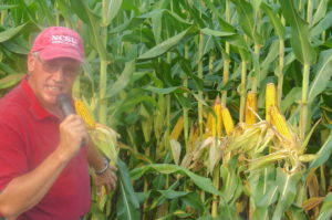 Cover photo for 2018 Corn Field Day