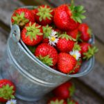 image of a metal bucket of strawberries with a couple of daisies mixed in.