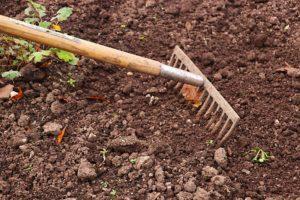 image of a rake raking garden soil and weeds.