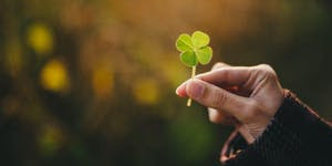 image of a hand holding a four-leaf clover.