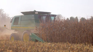 image of atractor mowing down corn stalks