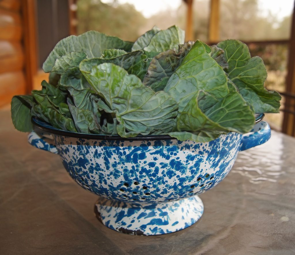 image of a blue colander full of collard greens