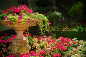 image of a birdbath filled with flowers and sitting in the middle of a flower garden