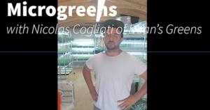 Image of Nic Cogliati in a greenhouse full of microgreens