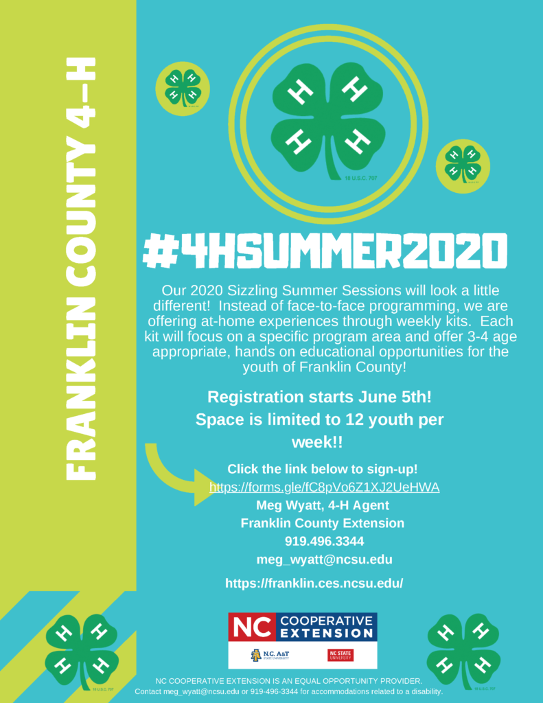 4-H Summer Sessions flyer page 1