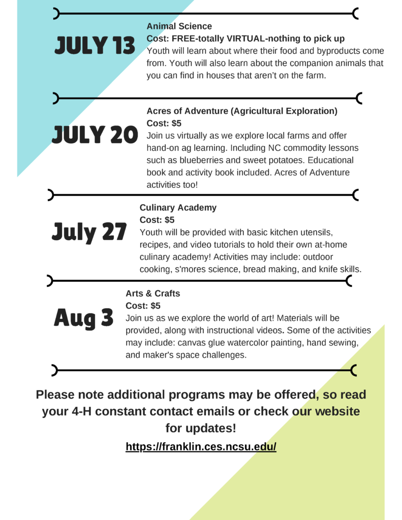 4-H Summer Sessions flyer page 3
