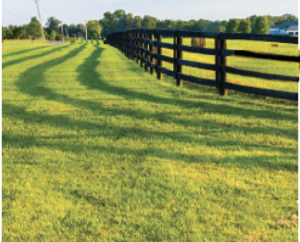 pasture with a fence