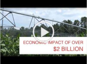 Thumbnail title Economic Impact of Over $2 Billion