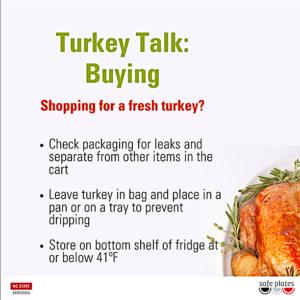 Turkey Talk flyer by Safeplates