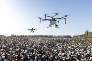 drone flying over cotton field
