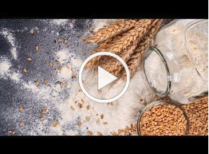 video thumbnail of wheat and pods, spilled jar of flour