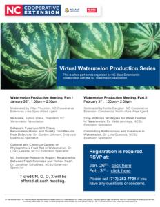 Virtual Watermelon Meetings Flyer