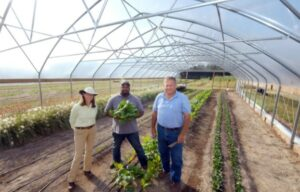 Paige Burns (left), pictured with Davon Goodwin and David Clark in a high tunnel at the Sandhills AgInnovation Center.